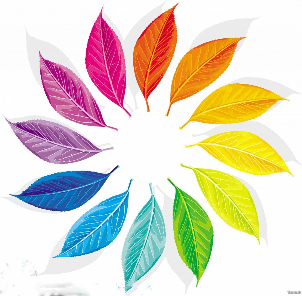 مطابقت ذهنی رنگها