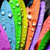 روان شناسی رنگ در تبلیغات
