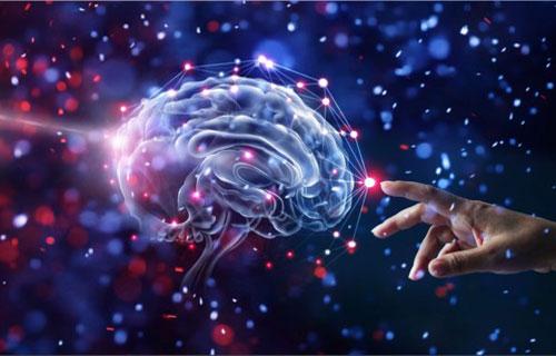۲۶ حقیقت روانشناسی رفتار انسان