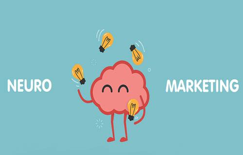 بازاریابی عصبی چگونه کار می کند
